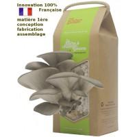 Kit à champignons - la boite à champignons