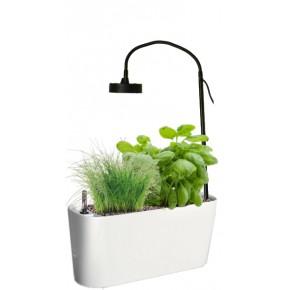 http://www.jardinageinterieur.fr/128-557-thickbox_default/potager-delta.jpg