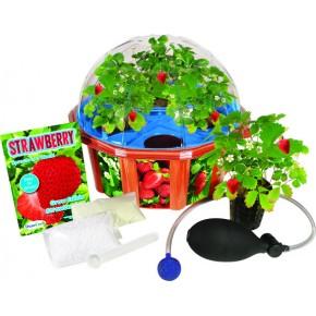 http://www.jardinageinterieur.fr/63-284-thickbox_default/potager-pedagogique-pour-enfants-hydroponique-fraises.jpg
